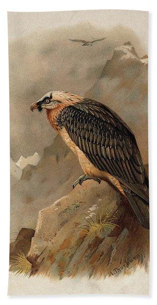 Bearded Vulture By Thorburn Beach Towel