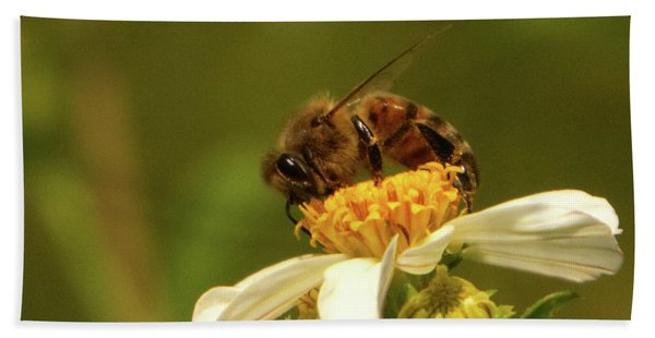 Bee Among Daisies Beach Towel