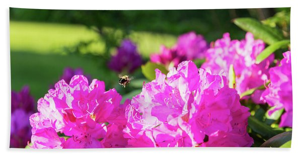 Bee Flying Over Catawba Rhododendron Beach Towel
