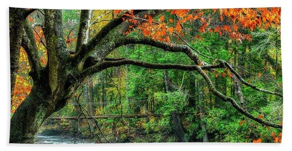 Beech Tree And Swinging Bridge Beach Towel