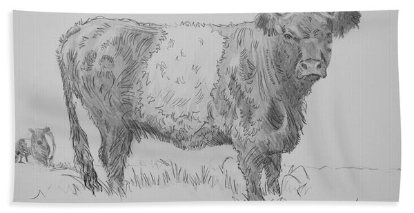 Belted Galloway Cow Pencil Drawing Beach Sheet