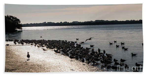 Birds At The Beach Beach Towel