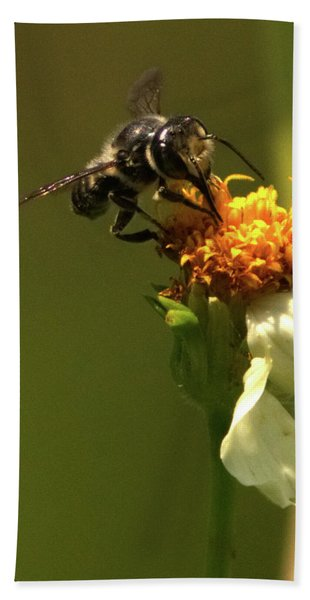 Black And Yellow Bee Pollinating Beach Towel