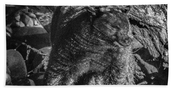 Black Bear Creekside Beach Towel
