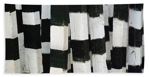 Beach Towel featuring the photograph Blanco Y Negro by Skip Hunt