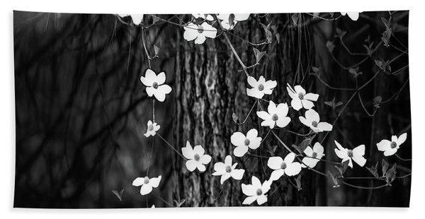 Blooming Dogwoods In Yosemite Black And White Beach Towel