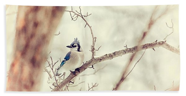 Blue Jay Winter Beach Towel