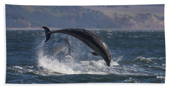 Bottlenose Dolphins - Scotland  #25 Beach Towel