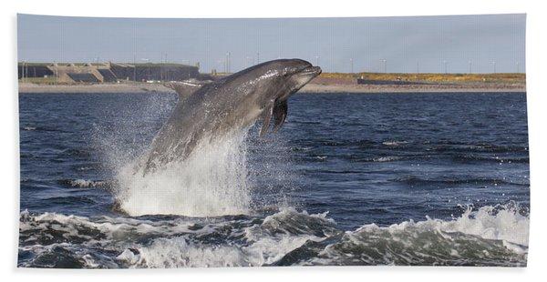 Bottlenose Dolphin - Scotland  #26 Beach Towel