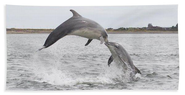 Bottlenose Dolphins - Scotland #1 Beach Towel