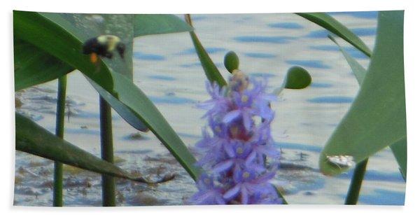 Bumblebee Pickerelweed Moth Beach Towel