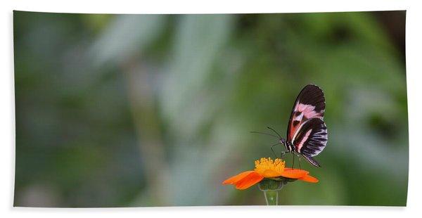 Butterfly 16 Beach Towel