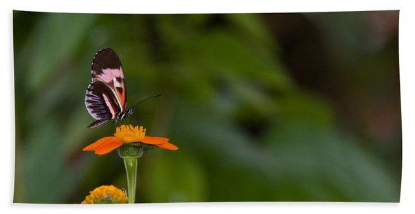Butterfly 26 Beach Towel