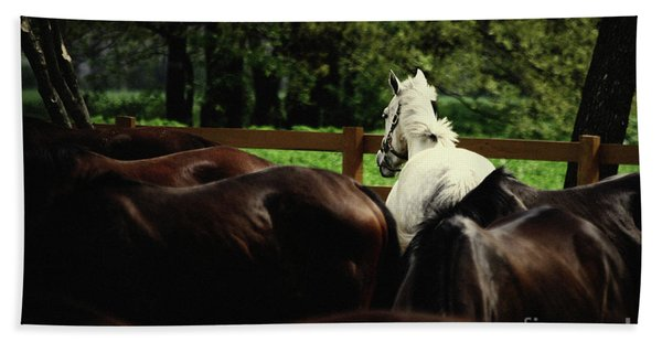 Calm Horses Beach Towel