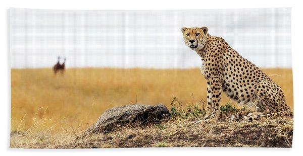 Cheetah Chillin In The Mara Beach Towel
