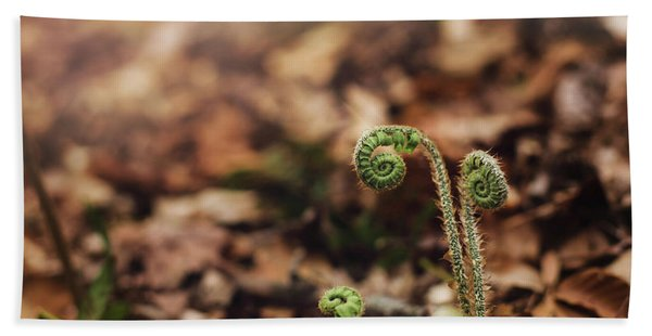 Coiled Fern Among Leaves On Forest Floor Beach Sheet