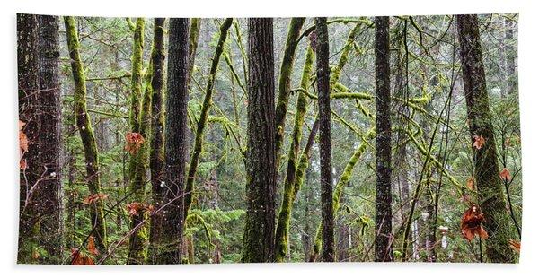 Comox Valley Forest-1 Beach Towel