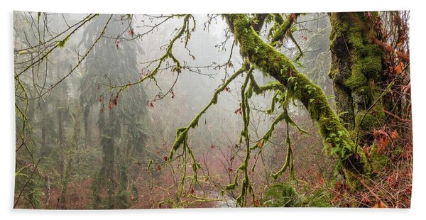Mist In The Forest Beach Towel