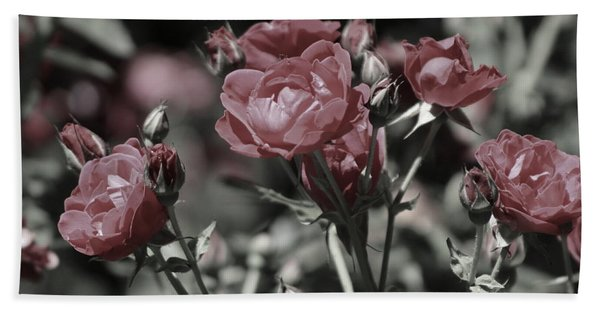 Copper Rouge Rose In Almost Black And White Beach Towel