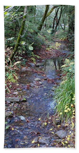 Creek On Mt Tamalpais 2 Beach Towel