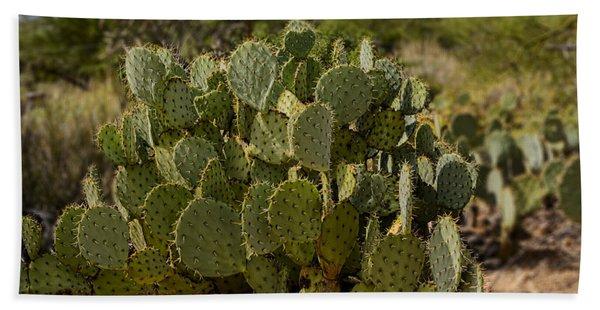 Desert Prickly-pear No6 Beach Sheet