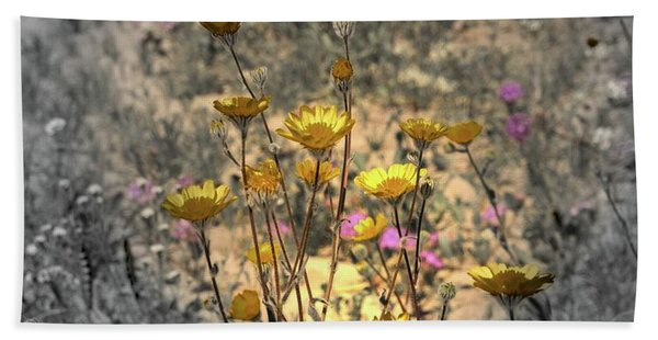 Beach Towel featuring the photograph Desert Spot Daisy by Michael Hope