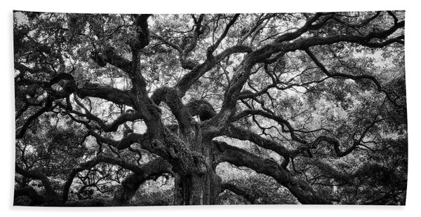 Dramatic Angel Oak In Black And White Beach Towel