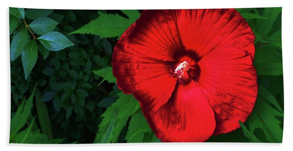 Dynamic Red Beach Towel