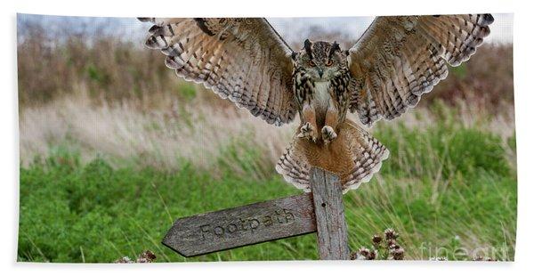 Eagle Owl On Signpost Beach Sheet