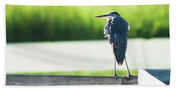 Early Morning Great Blue Heron Beach Towel