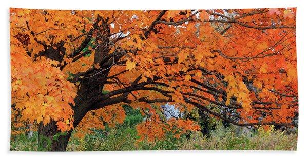 Edna's Tree Beach Sheet