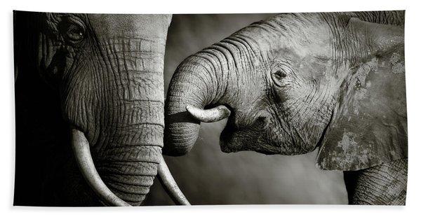 Elephant Affection Beach Towel