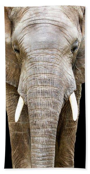 Elephant Face Closeup Looking Forward Beach Towel