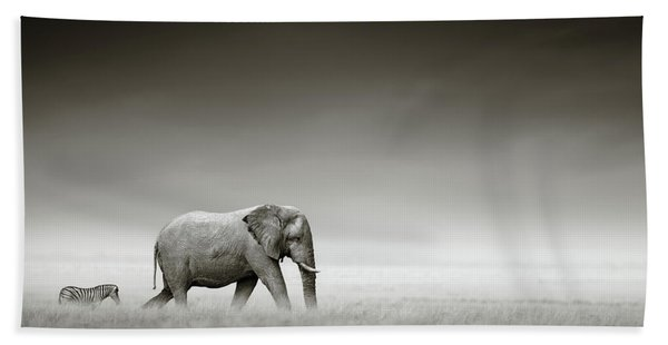 Elephant With Zebra Beach Towel