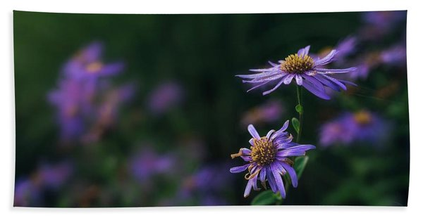 Fading Beauty Beach Towel