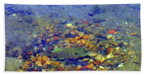 Fish Spawning Beach Towel