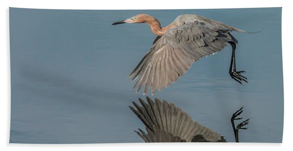 Fly By Reflection Beach Towel