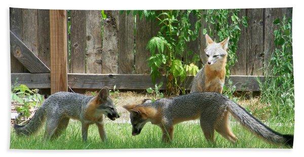 Fox Family Beach Towel