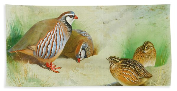 French Partridge By Thorburn Beach Towel