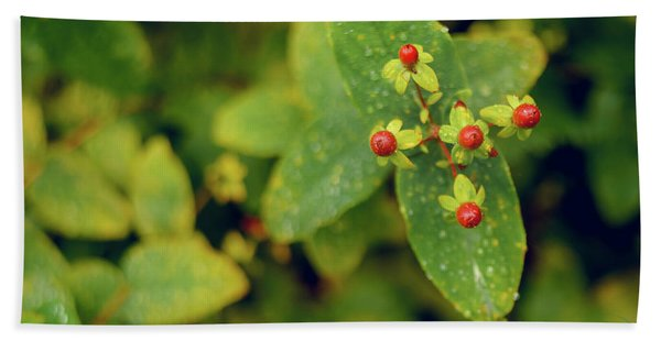 Fall Berry Beach Towel