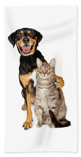 Funny Photo Of Dog With Arm Around Cat Beach Towel