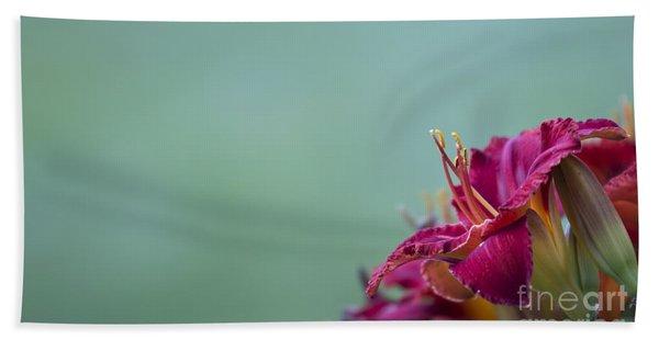 Fuchsia In Bloom Beach Towel