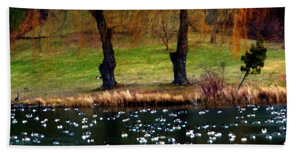 Geese Weeping Willows Beach Towel