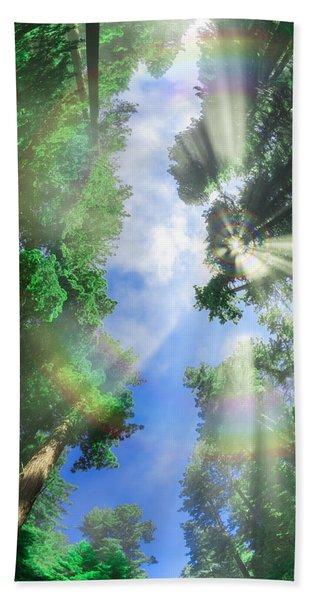 Glory Amongst Redwoods Beach Towel