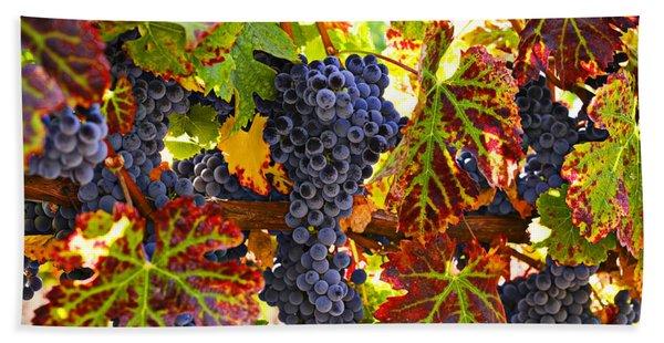 Grapes On Vine In Vineyards Beach Towel