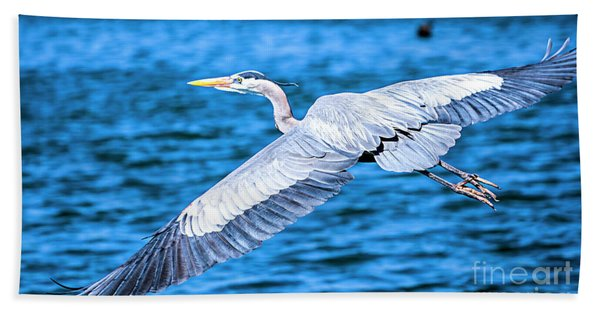 Beach Towel featuring the photograph Great Blue Heron Flight by David Millenheft
