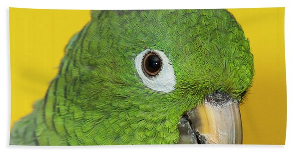 Green Parrot Head Shot Beach Towel