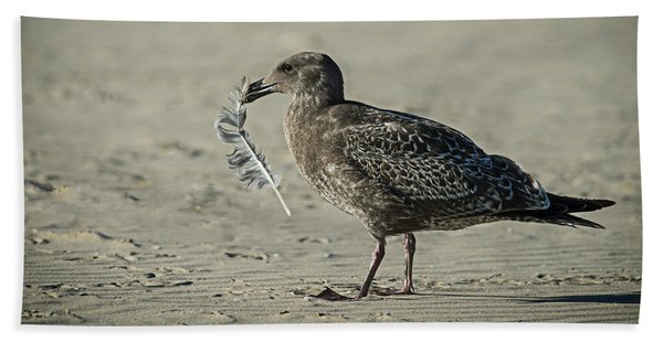 Gull And Feather Beach Towel
