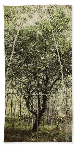 Hand Of God Apple Tree Poster Beach Towel