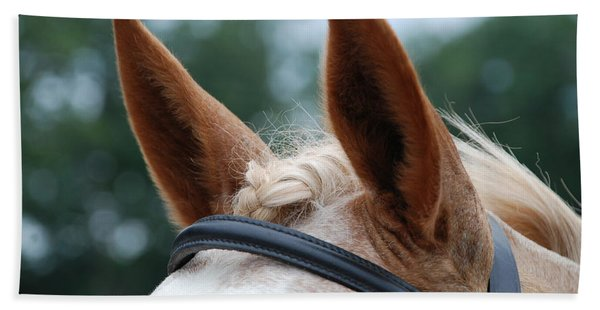 Horse At Attention Beach Towel